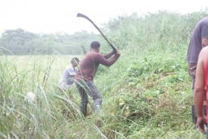 CLEAN-UP DRIVE AND TREE PLANTING  09.29.2017 (11)